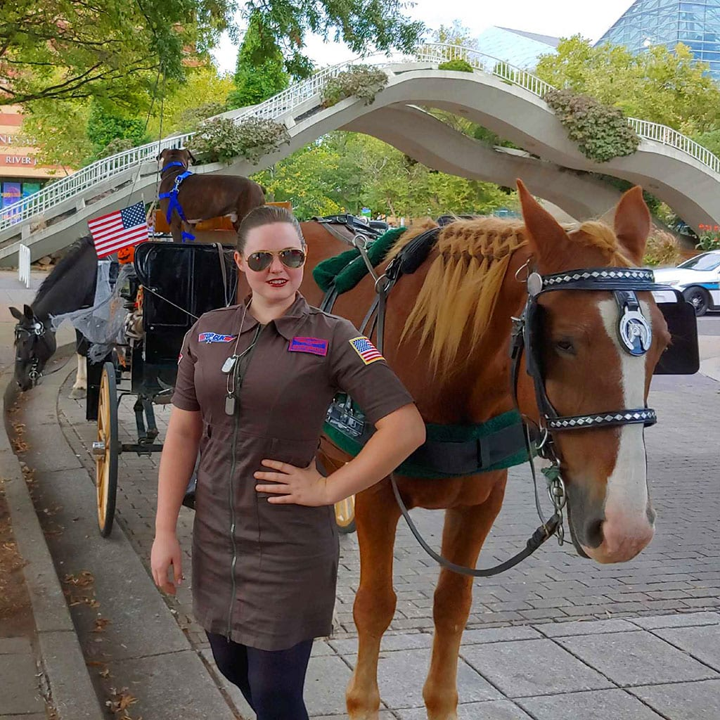 Chattanooga Tennessee Horse Drawn Carriage Rides and Wedding Services