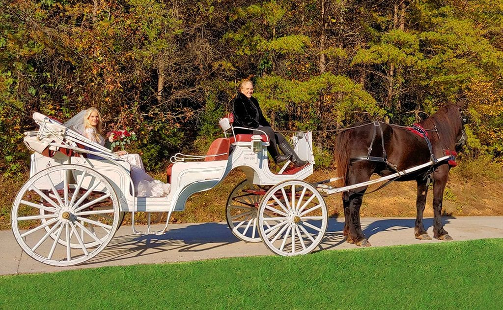 Chattanooga Horse Drawn Funeral Carriage Arrangements