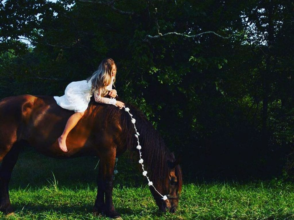 Chattanooga Horse Photography