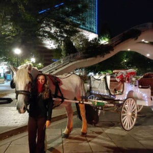 30 Minute Downtown Chattanooga Carriage Ride
