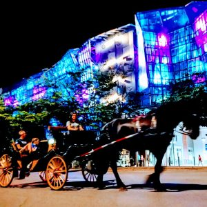 20 Minute Downtown Chattanooga Carriage Ride