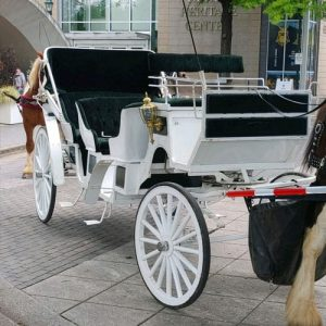 Chattanooga's Only Horse Drawn Limo Carriage Rides